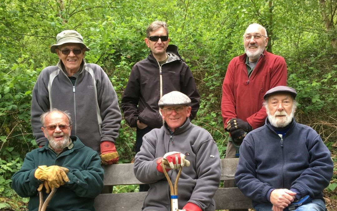 Team Work – What Dave and a bunch of volunteers can teach us